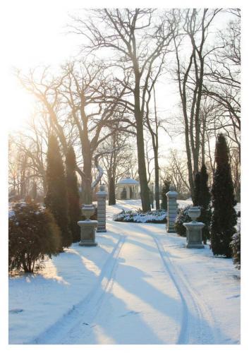 Piękna zima w czasie pandemii